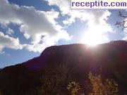 снимка 10451 към албум Пътувания